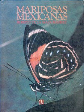 Mariposas Mexicanas