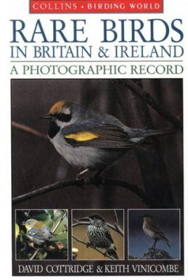 Rare Birds in Britain and Ireland: A Photographic Record