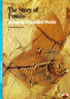 The Story of Fossils