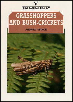 Grasshoppers and Bush Crickets of the British Isles