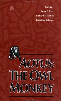 Aotus: The Owl Monkey