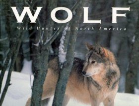 Wolf: Wild Hunter of North America