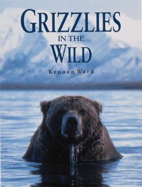 Grizzlies in the Wild