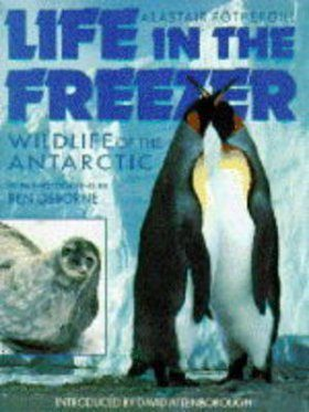 Life in the Freezer: A Natural History of the Antarctic, Junior Edition