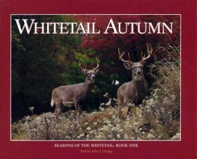Whitetail Autumn