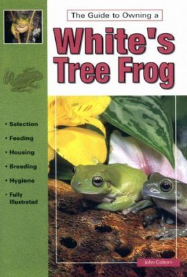 The Guide to Owning a White's Tree Frog