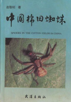 Spiders in the Cotton Fields in China [Chinese]