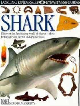 Eyewitness Guide: Shark