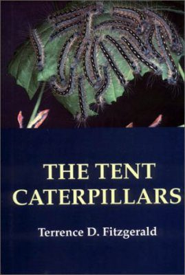 The Tent Caterpillars