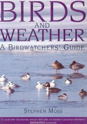 Birds and Weather