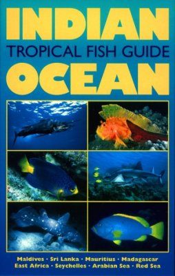 Indian Ocean: Tropical Fish Guide