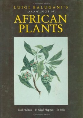 Luigi Balugani's Drawings of African Plants