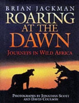 Roaring at the Dawn