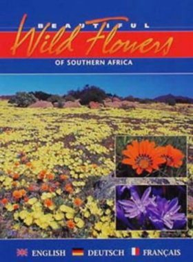 Beautiful Wild Flowers of South Africa