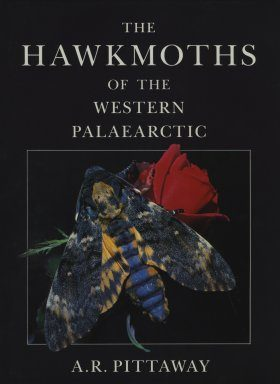 The Hawkmoths of the Western Palearctic