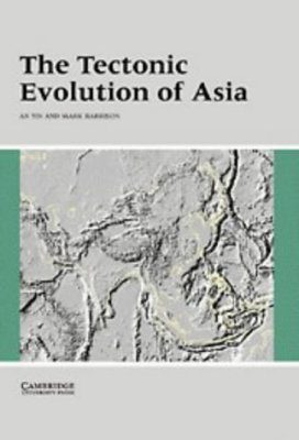 The Tectonic Evolution of Asia