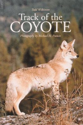 Track of the Coyote