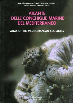 Atlas of the Mediterranean Seashells / Atlante delle Conchiglie Marine del Mediterraneo, Volume 4