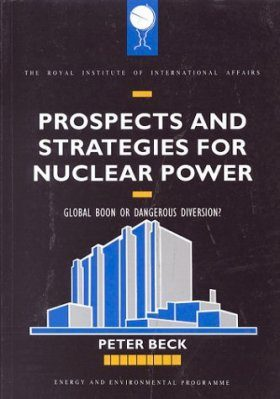 Prospects and Strategies for Nuclear Power
