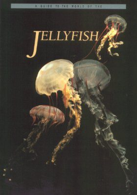A Guide to the World of the Jellyfish