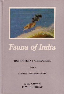 The Fauna of India and the Adjacent Countries: Homoptera, Aphidoidea, Part 5