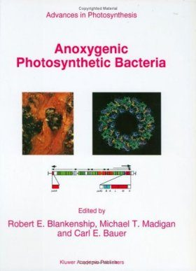 Anoxygenic Photosynthesis Bacteria