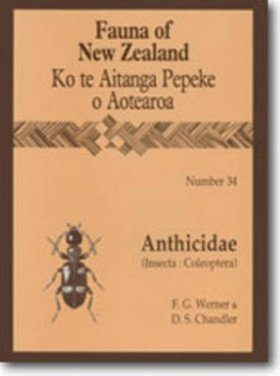 Fauna of New Zealand, No 34: Anthicidae (Insecta: Coleoptera)