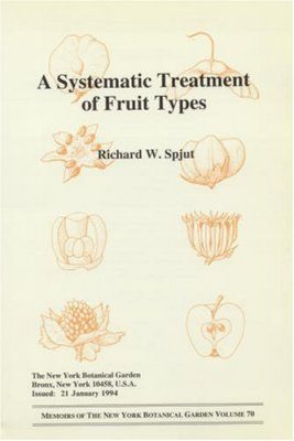 Systematic Treatment of Fruit Types