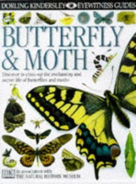 Eyewitness Guide: Butterfly and Moth