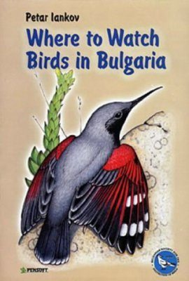 Where to Watch Birds in Bulgaria