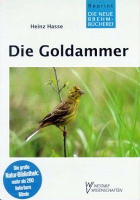 Die Goldammer (Yellowhammer)
