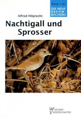 Nachtigall und Sprosser (Nightingale and Thrush Nightingale)