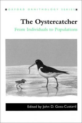 The Oystercatcher
