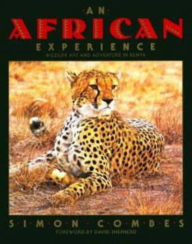 An African Experience