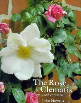 The Rose and the Clematis