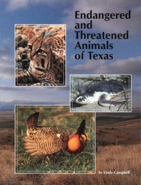 Endangered and Threatened Animals of Texas