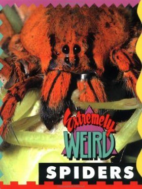 Extremely Weird Spiders