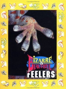 Bizarre and Beautiful Feelers