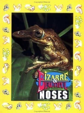 Bizarre and Beautiful Noses