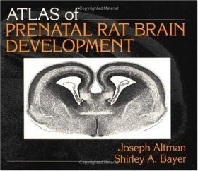 Atlas of Prenatal Rat Brain Development