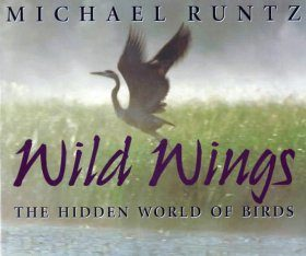 Wild Wings: The Hidden World of Birds