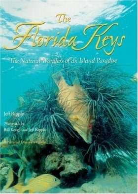 Florida Keys: The Natural Wonders of an Island Paradise