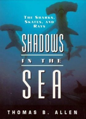 Shadows in the Sea