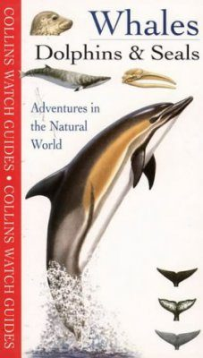 Collins Watch Guides: Whales, Dolphins and Seals