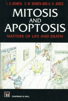 Mitosis and Apoptosis