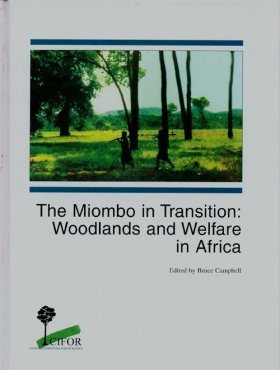 The Miombo in Transition: Woodlands and Welfare in Africa