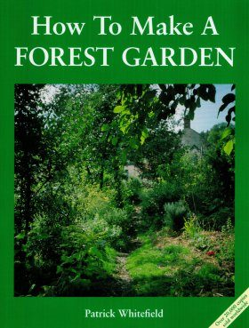 How to Make a Forest Garden