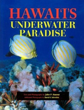 Hawaii's Underwater Paradise