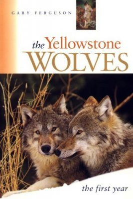 The Yellowstone Wolves