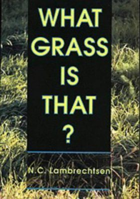 What Grass is That?